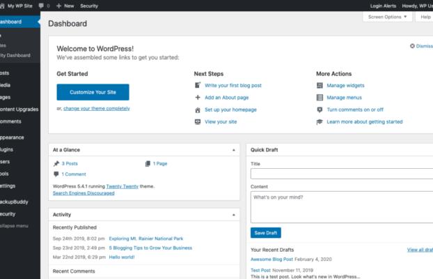 WordPress 5.5 er nu lanceret
